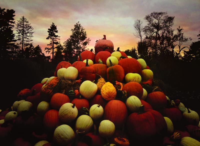 Great%20Pumpkin%20Charlie%20Brown.jpg