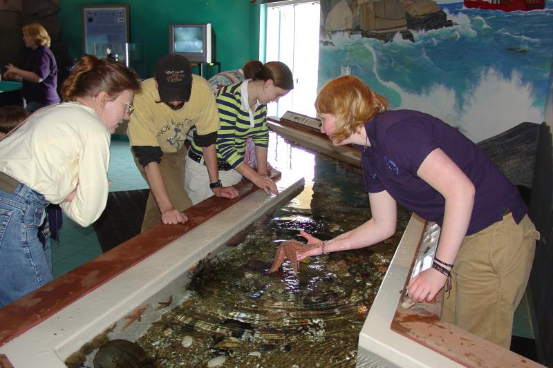 Maine State Aquarium hosts Business After Hours June 11 Boothbay ...