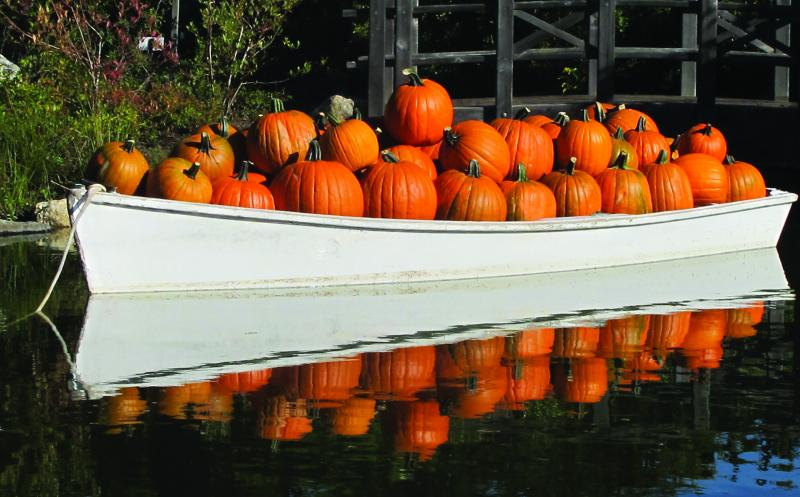 Come See The Dinghy Full Of Pumpkins In The Pond Of The Bibby U0026 Harold  Alfond Childrenu0027s Garden. Courtesy Of Coastal Maine Botanical Gardens