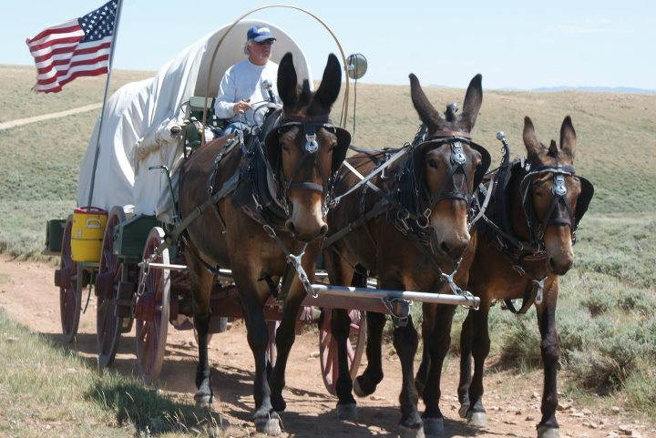 Life after traveling the Oregon Trail
