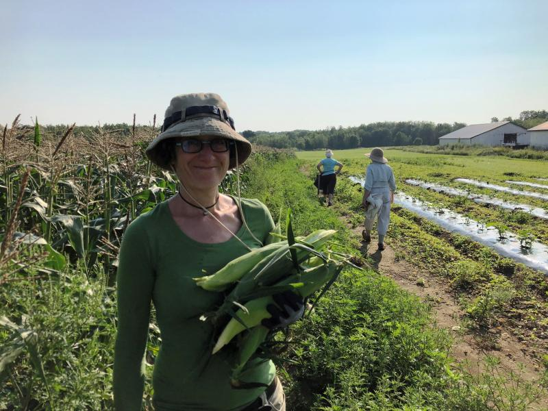 Volunteers wanted for Lincoln County Gleaners | Boothbay