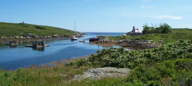 Damariscove Island Harbor. Courtesy of Boothbay Region Land Trust
