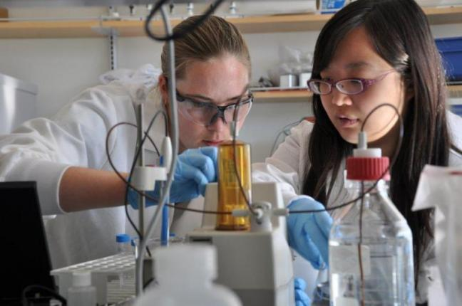 Katherine Moore, left, and Josephine Liang work together Nov. 9 at Bigelow Laboratories in East Boothbay. Moore and Liang are both participating in the semester-in-residence program through Colby College at Bigelow. BEN BULKELEY/Boothbay Register