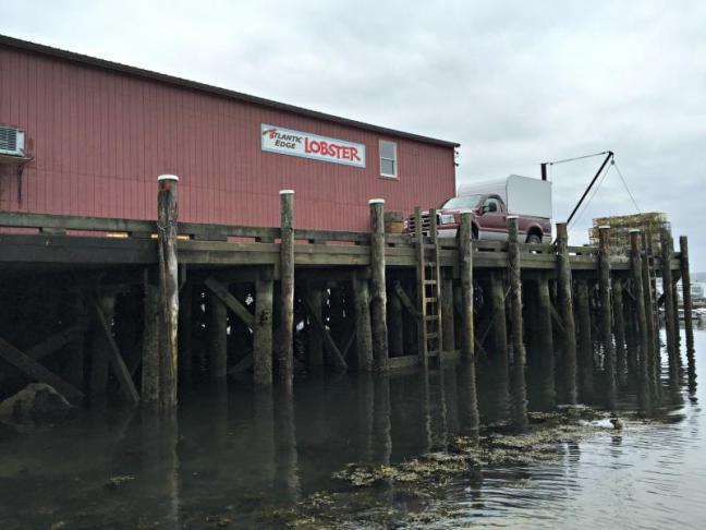Fish pier piling bid near completion boothbay register for Dock pilings cost