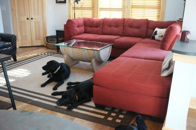 pet friendly, boothbay harbor, rental, year round