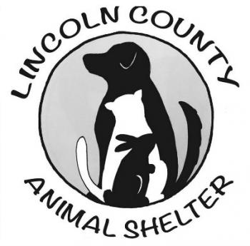 lincoln county animal shelter, mutt scrub