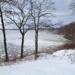 Photo snowy coastline