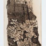 """Frances Hodsdon's """"Bark 1A"""""""