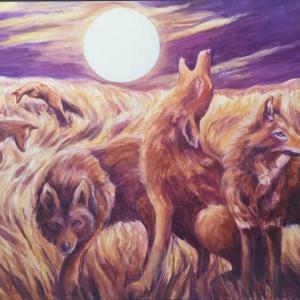Coyote Medicine by Helen Warren